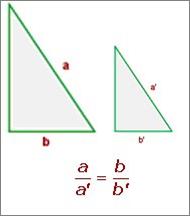 Trigonometric ratios | trigonometric ratios